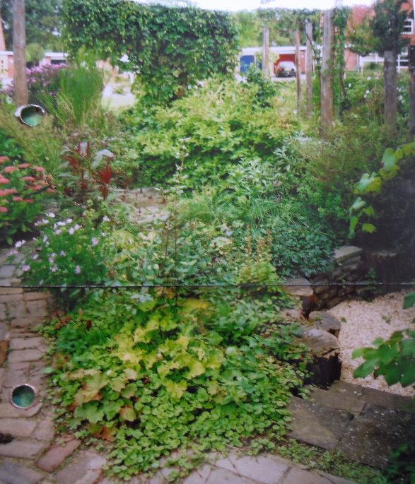 Eigen innovaties tuinuitvindingen tuinontwikkeling for Stadstuinen voorbeelden