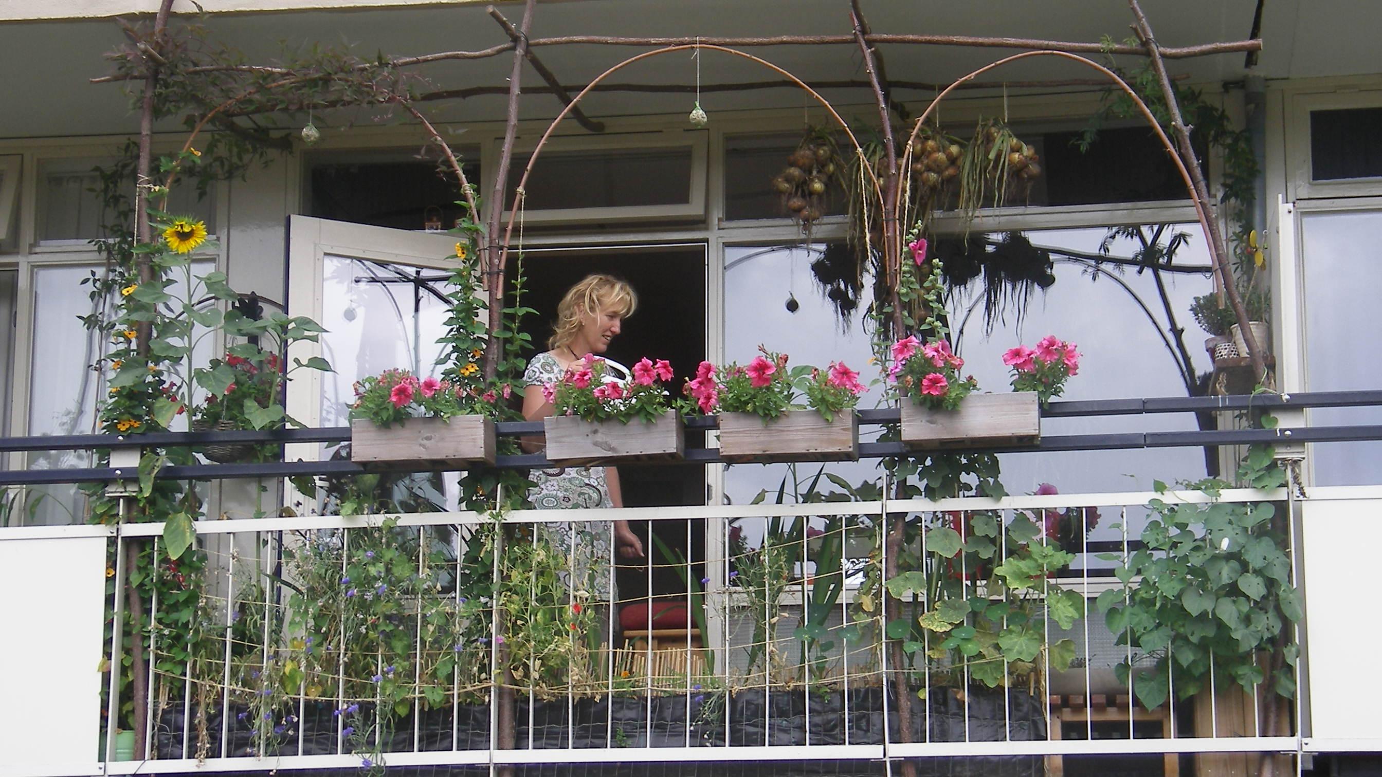 Tuinieren Op Balkon : Balkontuinieren tuinontwikkeling